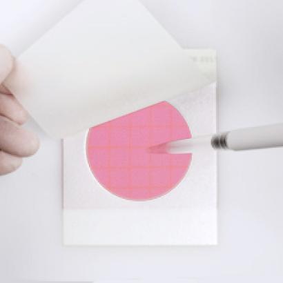3M Petrifilm Steps Inoculate