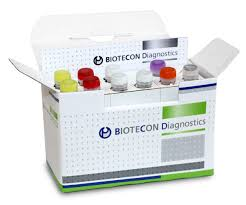 Real-time PCR Kit